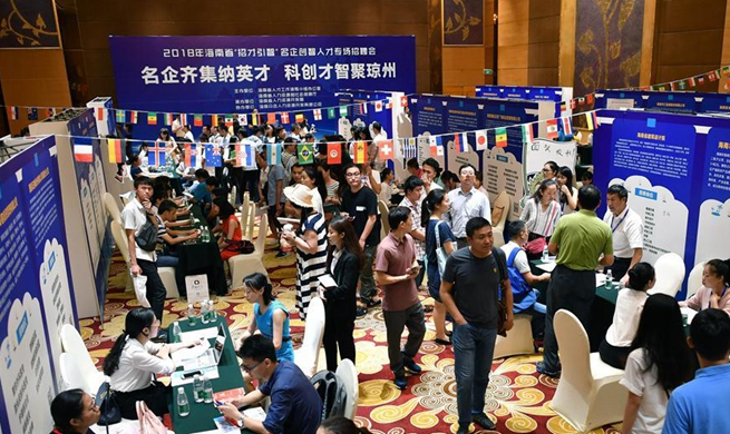 Job fair held in Haikou, S China's Hainan