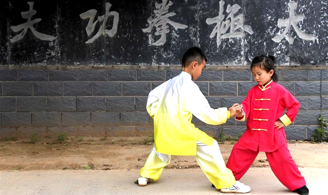 Taiji schools, training centers in central China's Henan attract lots of fans