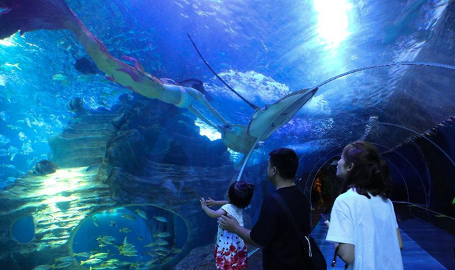 Visitors enjoy mermaid show at aquarium in Guiyang, China's Guizhou