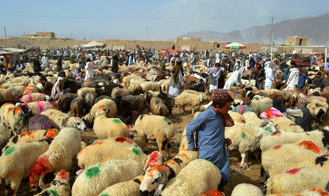 People prepare for upcoming Eid al-Adha festival around world