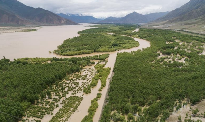 Achievements made in desert control along Yarlung Zangbo River in SW China