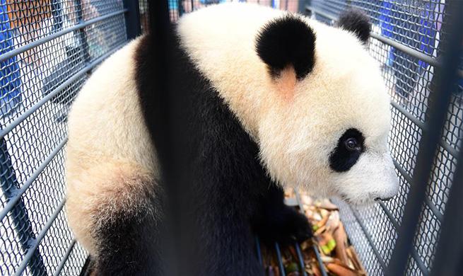Xinhua weekly photos