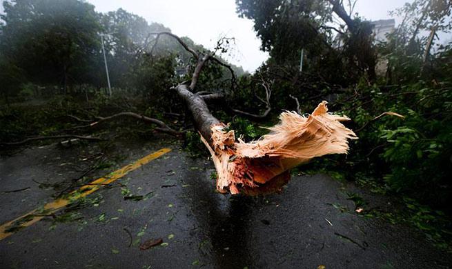 Super Typhoon Mangkhut lands on south China coast