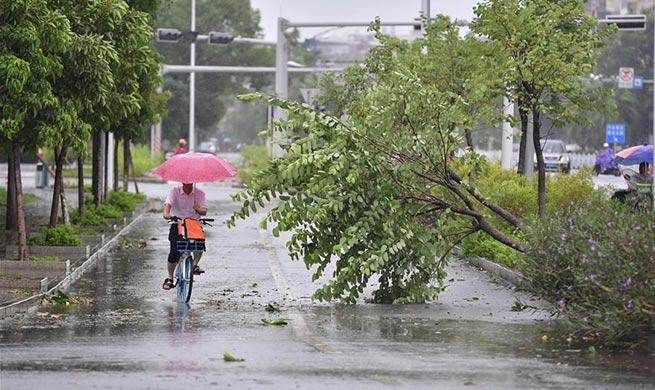 Super Typhoon Mangkhut ravages China's Guangxi