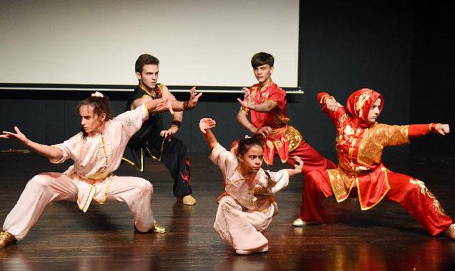 Chinese Kung Fu show enchants audience at Istanbul university