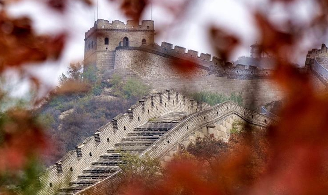 Happy leisure time during Beijing's autumn