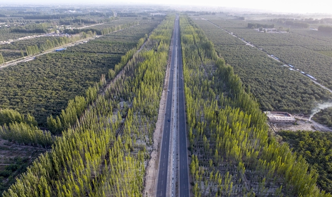 "Xinhua Headlines: Man-made oasis: Xinjiang's ""green wall"" fights expanding desert"