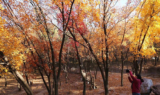 "Scenery across China on traditional solar term ""First Frost"""