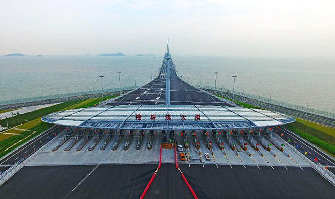 China Focus: World's longest cross-sea bridge opens to public