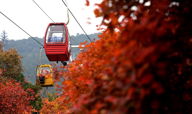Red leaves attract tourists at Badachu Park in Beijing