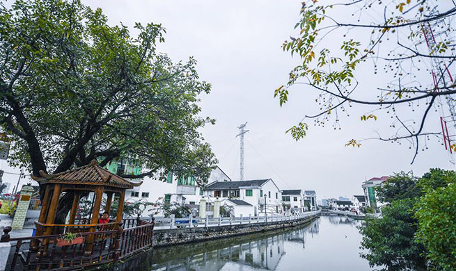 Low-carbon lifestyle promoted in China's Zhejiang