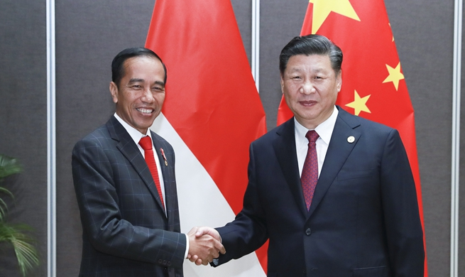 China, Indonesia agree to promote bilateral cooperation