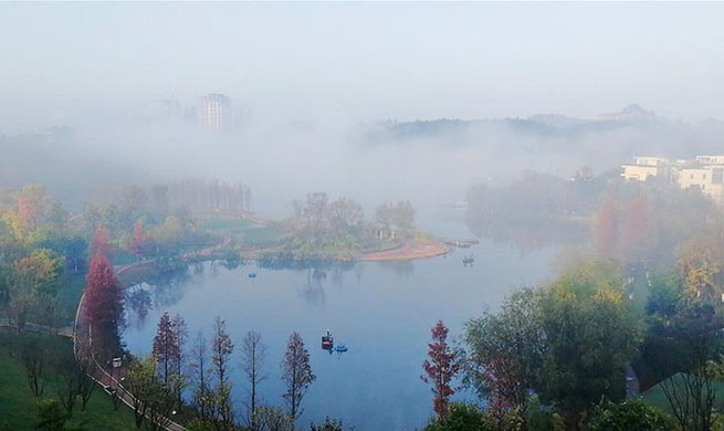 Fog scenery at park in Guiyang, China's Guizhou