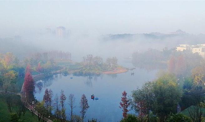Fog scenery at park in Guiyang, China's Guizhou