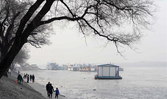 In pics: frozen Songhua River in Harbin