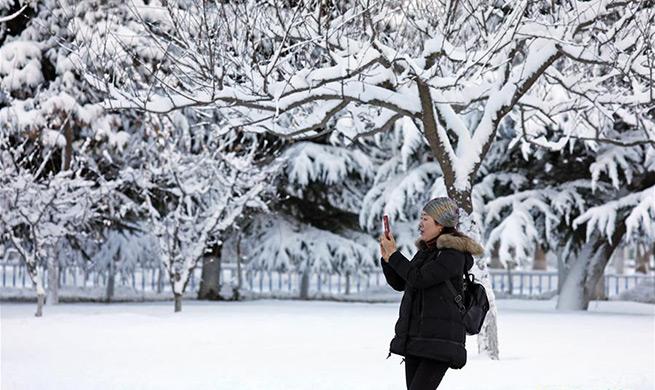Snowfall and sleet hit east China's Shandong
