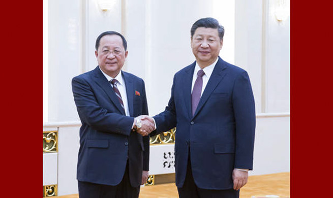 Chinese president meets DPRK foreign minister