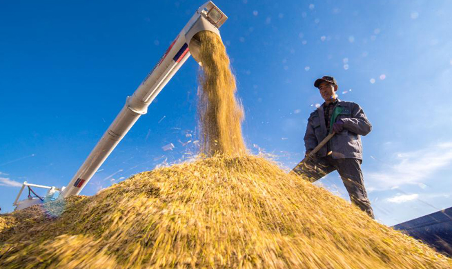 China encourages mechanized agriculture with new measures