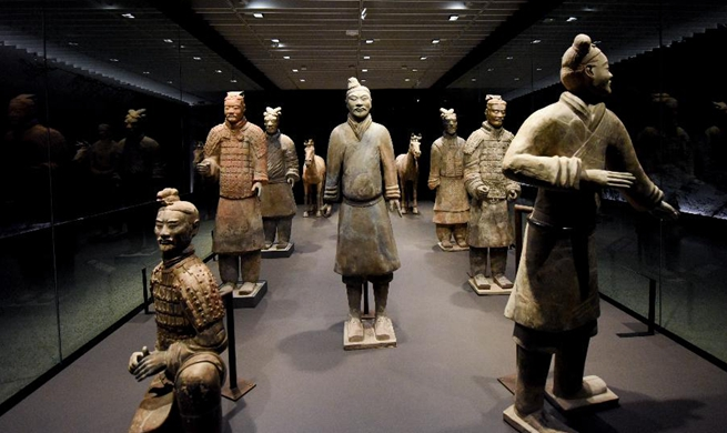 "Exhibition ""Terracotta Warriors: Guardians of Immortality"" debuts for preview in New Zealand"