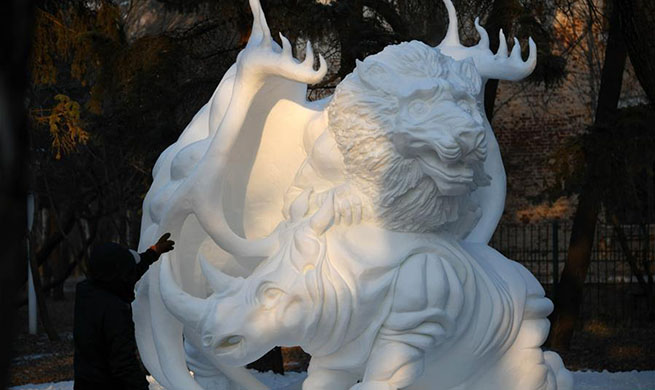 Highlights of Undergraduate Snow Sculpture Competition in NE China