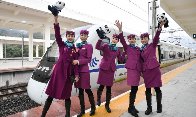 Chengdu-Ya'an high-speed railway starts operation
