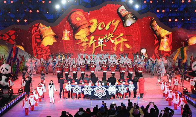 Various activities organized across China to greet year of 2019