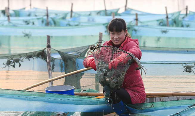 Local gov'ts help villagers to shake off poverty in Jiangsu, Shaanxi