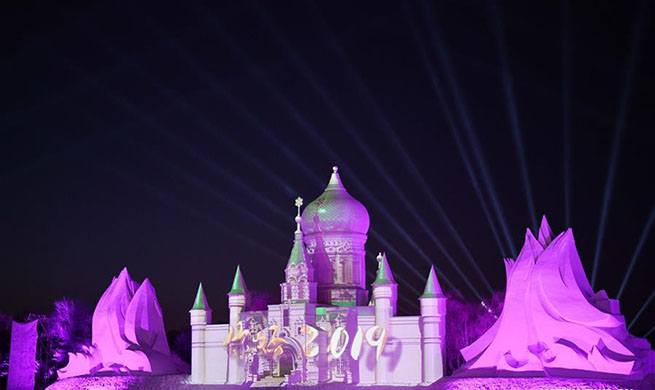 Sun Island Int'l Snow Sculpture Art Expo held in NE China's Harbin