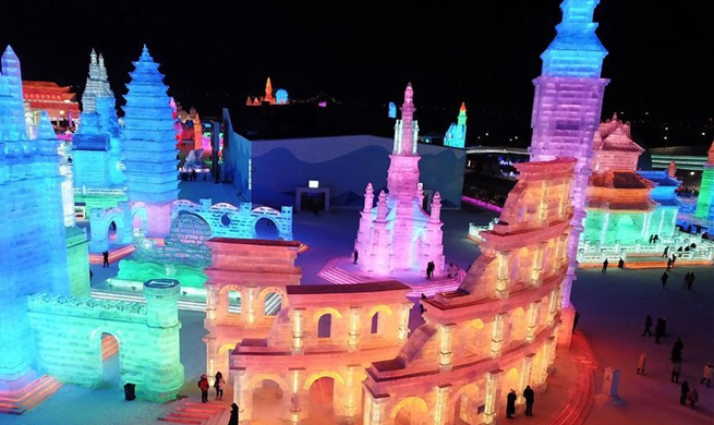 In pics: Harbin Ice-Snow World in NE China's Heilongjiang