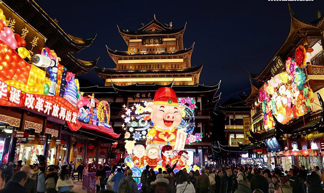 Lantern fair kicks off in Shanghai, east China