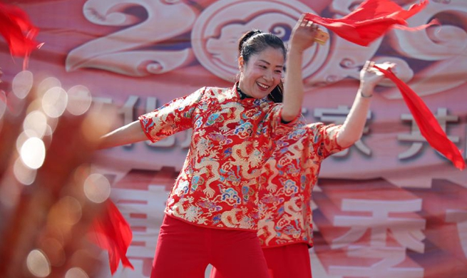 Volunteers bring performances, spring festival scrolls to villages in China's Shandong