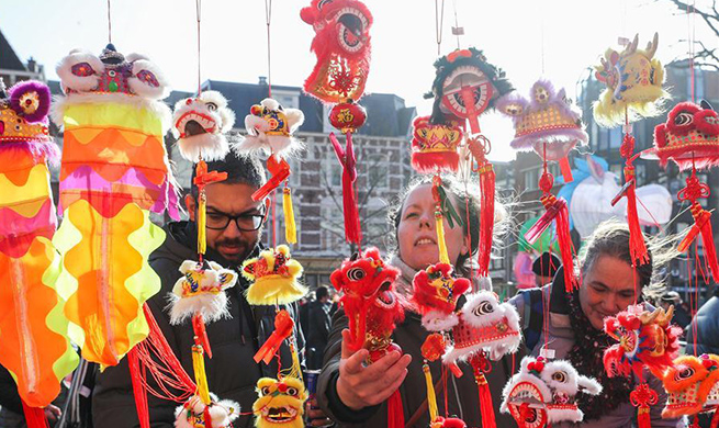 Activities featuring Chinese culture held to celebrate Chinese Lunar New Year in Netherlands
