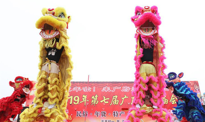 Highlights of temple fair in Handan, N China's Hebei