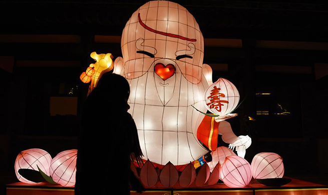 Fancy lanterns displayed in Linyi to greet upcoming Lantern Festival