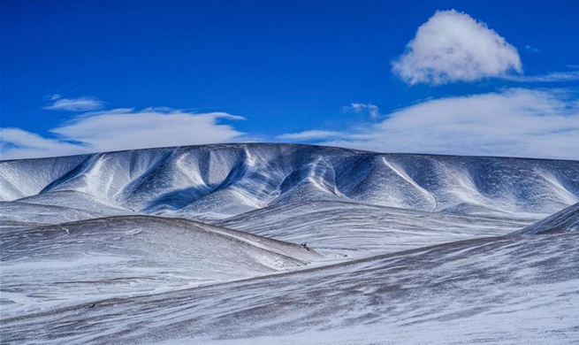 Local gov't works to protect environment in Shuanghu, China's Tibet