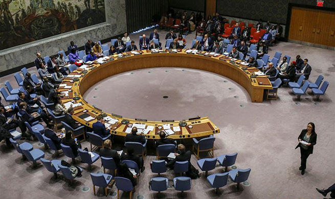 Security Council adopts resolution on silencing guns in Africa
