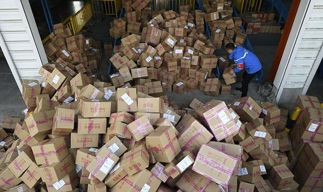 Number of online shoppers in China hits 610 mln