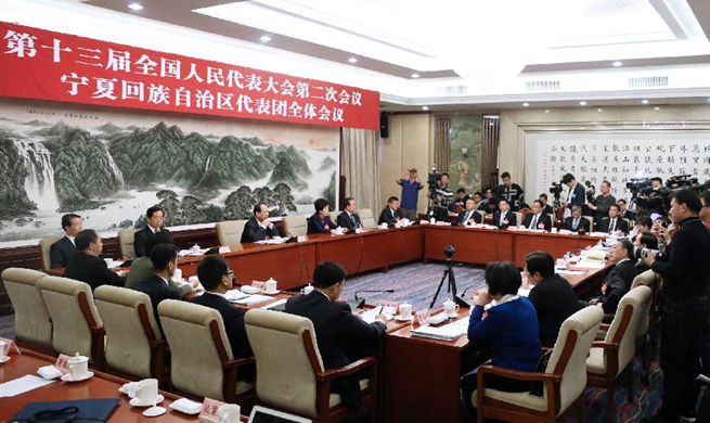 Plenary meetings of 13th NPC deputies open to media