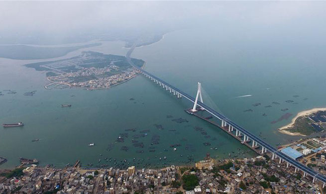 Cross-sea Haiwen Bridge officially starts operation in S China's Hainan