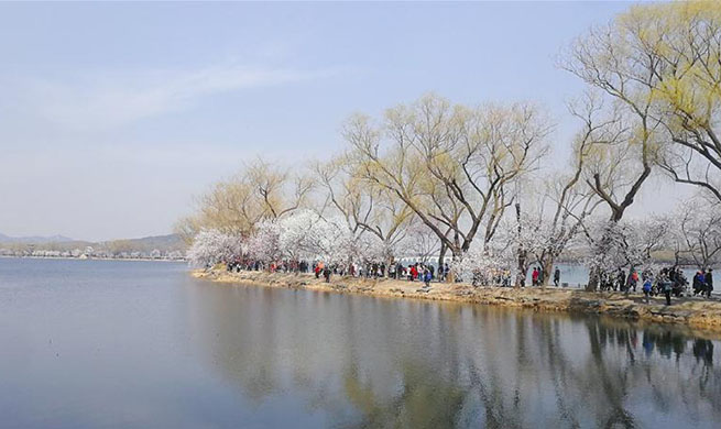In pics: spring scenery in Beijing