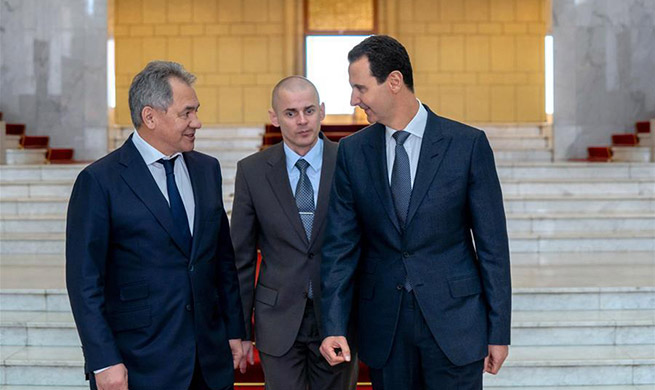 Russian defense minister meets al-Assad in Syria