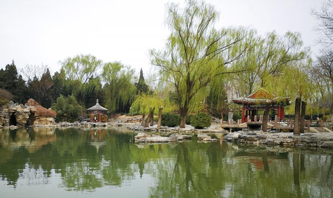 Spring scenery in Beijing