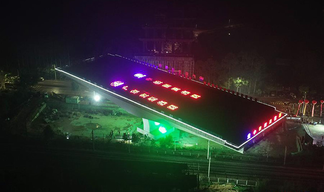 Swivel bridge completes rotation in south China's Guangdong