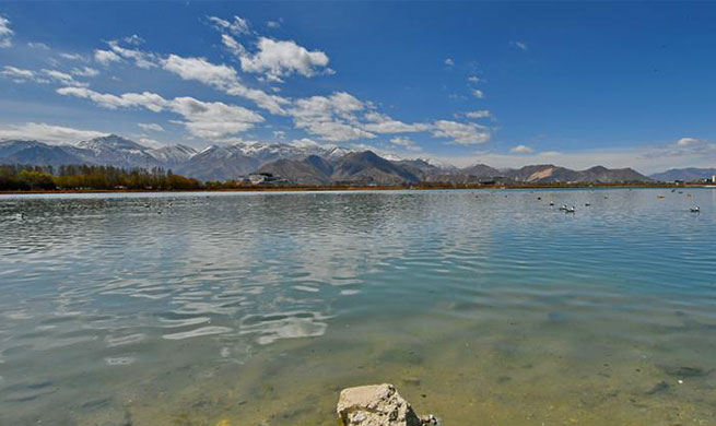 "Lhalu wetland, ""the Lung of Lhasa"" in China's Tibet"