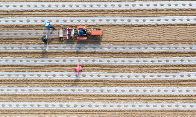 Farm work across China