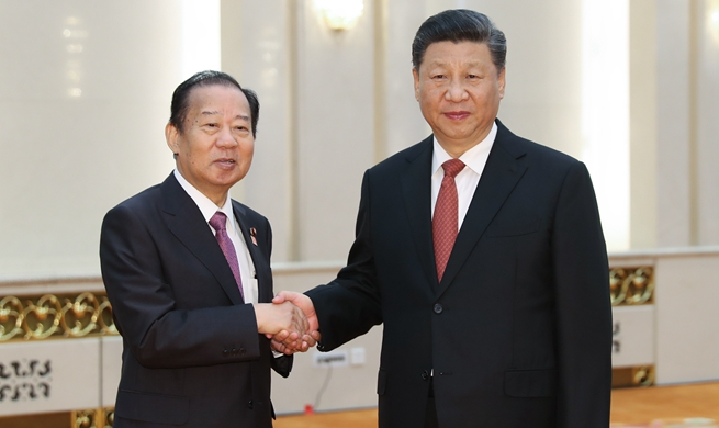 Xi meets special envoy of Japanese prime minister