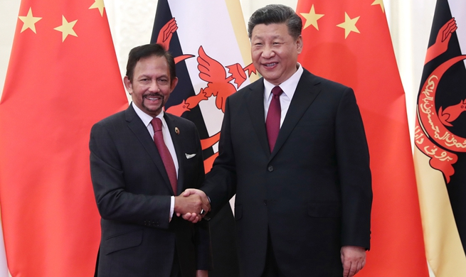 Xi meets Brunei's Sultan