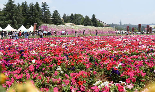 Tourists have fun amid flowers during Labor Day holiday in China