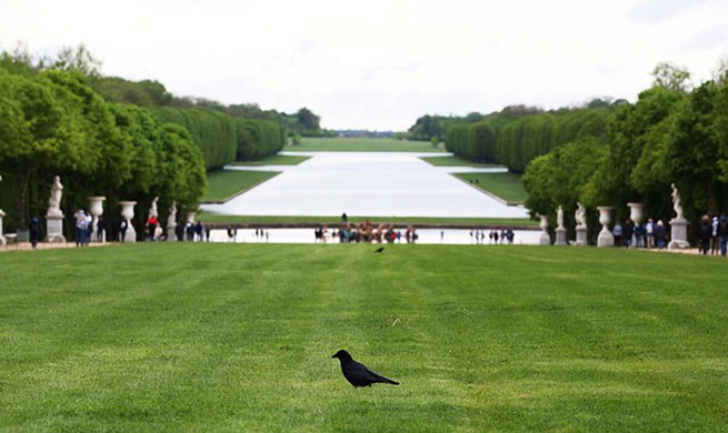Scenery of Chateau de Versailles in suburbs of Paris
