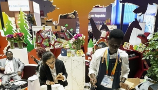 Africa to benefit from China-Africa trade expo: Zambian experts